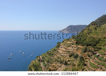 View of the Cinque Terre village coastline of Vernazza, vine and vineyards Italy