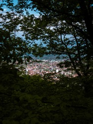 View of the city of Peja among the leaves and branches of trees