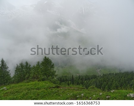 View of the forest from the mountain. Fog. Alps Foto d'archivio ©