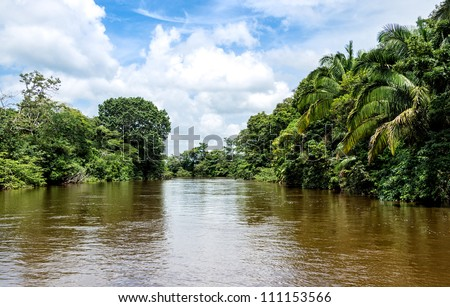 View of the Frio River in the Ca���±o Negro Wildlife Refuge in Costa Rica.