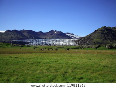 View of the glacier over the fields Iceland