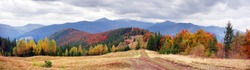 view of the Gorgan Hamster, Bruise, Javornik fall. Forest of beech and birch spruce beautiful colorful color after bad weather rain and snow on the background of picturesque mountains