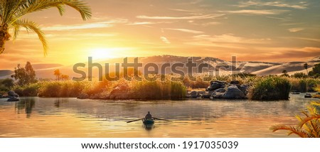View of the Great Nile in Aswan at sunset Photo stock ©