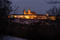 view of the illuminated St. Vitus Cathedral and Prague Castle through the silhouettes of a tree in the park in the evening