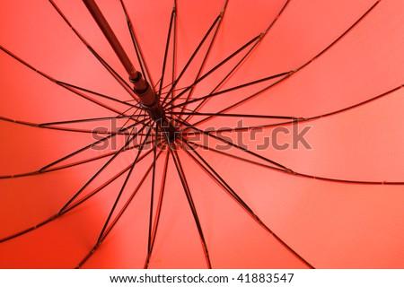 view of the internal mechanism of an open umbrella