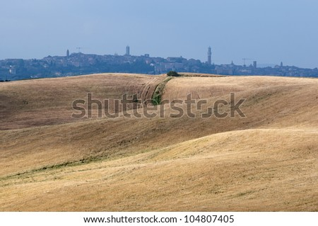 View of the medieval city of Siena behind typical Tuscan hills