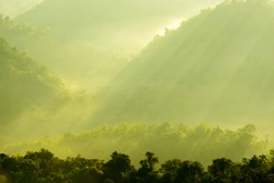 View of the morning sunlight through the mist seen in a beam of light.