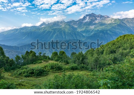 View of the mountain meadow with trees, grass and footpath and high mountains with snow-capped peaks in the distance. Caucasus, Russia