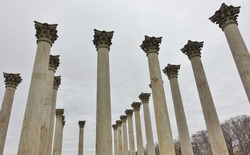 View of the National Capitol Columns monument in the National Arboretum, Washington DC