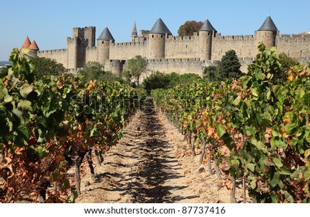 View of the old town Carcassonne from the vineyard. Southern France