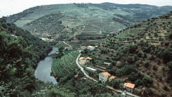 View of the river and vineyards are on a hills in landscape Douro Valley, Portugal.