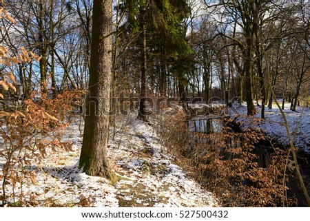 view of the river in a dark winter forest ez canvas