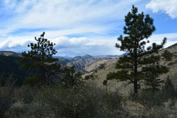 view of the Rocky mountains from Beaver Brook trailhead