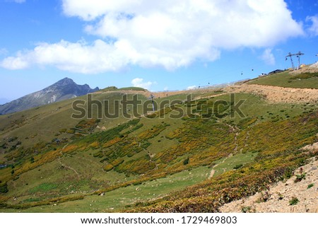 View of the rose Plateau on a Sunny day. Rosa Peak and Rosa Plateau in Rosa Khutor, Sochi, Caucasus, Russia.