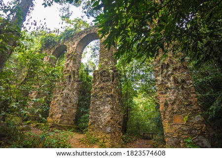 View of the ruins of an old aqueduct at Ilha Grande - Ilha Grande, Angra dos Reis, Brazil Foto stock ©
