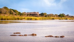 View of the Sabie Sand River with hippos and the Lower Sabie Rest Camp, Kruger National Park, South Africa