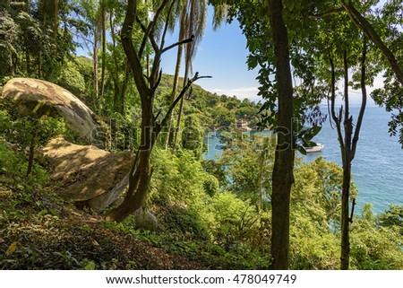 View of the sea through the rain forest forest in the Green Coast of Rio de Janeiro, outdoor, nature, jungle, tourism, coastline, seascape, tropical, exotic, landscape, scenic, tropic