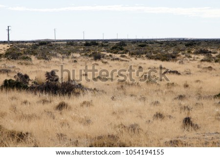 Shutterstock View of the semi-arid barren desret land of the Valdes Peninsula nature reserve close to Puerto Madryn, Patagonia, Argentina.