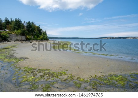 View of the shoreline near the Coupeville Wharf on Whidbey Island in Washington State at low tide