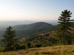 View of the slopes of the mountain Ozren from the peak Gostilj, a landscape of hilly Balkans at evening