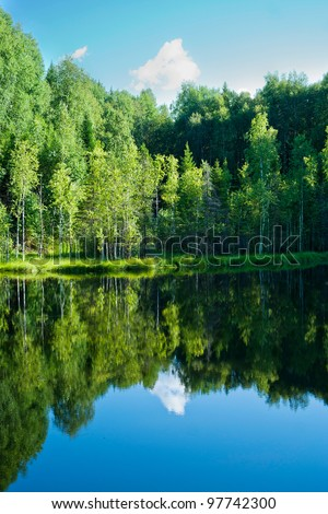 View of the solitary lake in forest. Russia