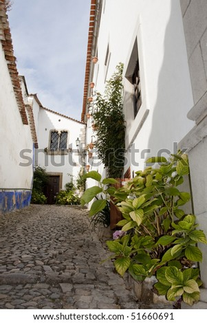 view of the typical streets of  the small village Óbidos located on Portugal.