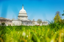 View of The United States Capitol Building home of the USA Congress through fresh green grass in Washington, D.C.