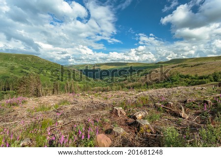 View of the valley in the  Brecon Beacons National Park, Wales.