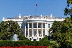 View of the White House in Summer with Red Flowers