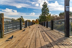 View of the wooden bridge in Central Park in Fremont