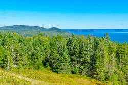 View of trees and landscape in Fundy National Park, New Brunswick, Canada