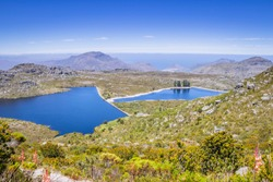 View of two dams on Table Mountain surrounded by green fynbos bush, Cape Town, South Africa
