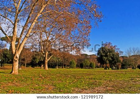 View of Villa Borghese Park, Rome, Italy
