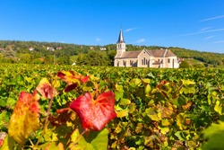 View of vineyards of Givry, in Burgundy, France