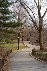 View of walkway, trees and a lamp post in central park. Early spring and two people are sitting on a bench in the background