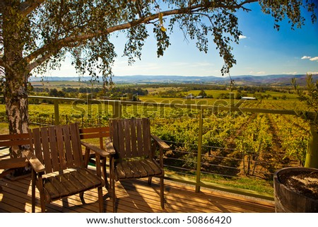 View of Wine Field from Porch