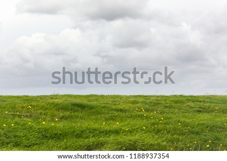 View on a Dutch landscape with an empty field or meadow with fresh green grass and an overcast grey sky in the Netherlands. Giving a feeling of space, emptiness, zen or being abandoned.