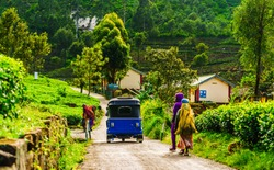 View on blue Tuk Tuk on the way to tea plantation in Haputale, Sri Lanka
