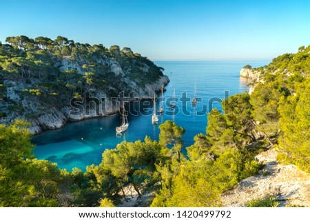 View on Calanque of Port Pin in Cassis , France. Photo stock ©