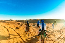 View on camel trek in the desert of Morocco next to M'hamid