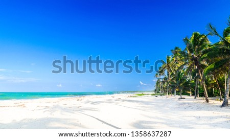 View on Caribbean tropical beach by Palomino in Colombia #1358637287