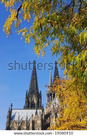 View on cathedral of Cologne in Germany with yellow autumn foliage and blue sky