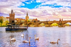 View on Charles bridge and swans on Vltava river in Prague at sunset, Czech Republic