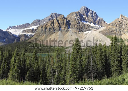 View on coniferous woods and Rocky mountains of Canada
