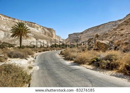 View on famous canyon of the spring Tsin, Ein Avdat National park in desert of Negev, Israel