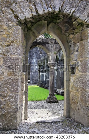 View on interior of ruins Portumna Priory