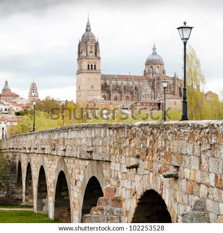 View on New Cathedral in Salamanca (Spain)