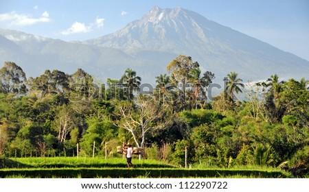 View on Rinjani volcano in Lombok, Indonesia
