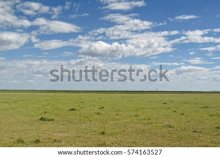 View on savanna plain against cloudy sky background. Lake Manyara National Park, Tanzania, Africa.   #574163527