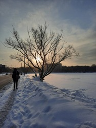 view on sunset, winterlandscape, winter and white snow,  person walking, view on tree and person walking, view on sunrise,
